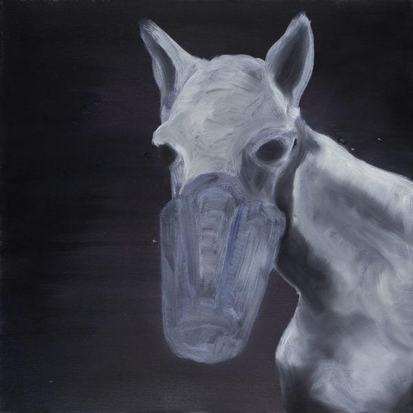 Malerei, Öl auf Leinwand, 40cm x 40cm, Pferdekopf, artist: Franziska King