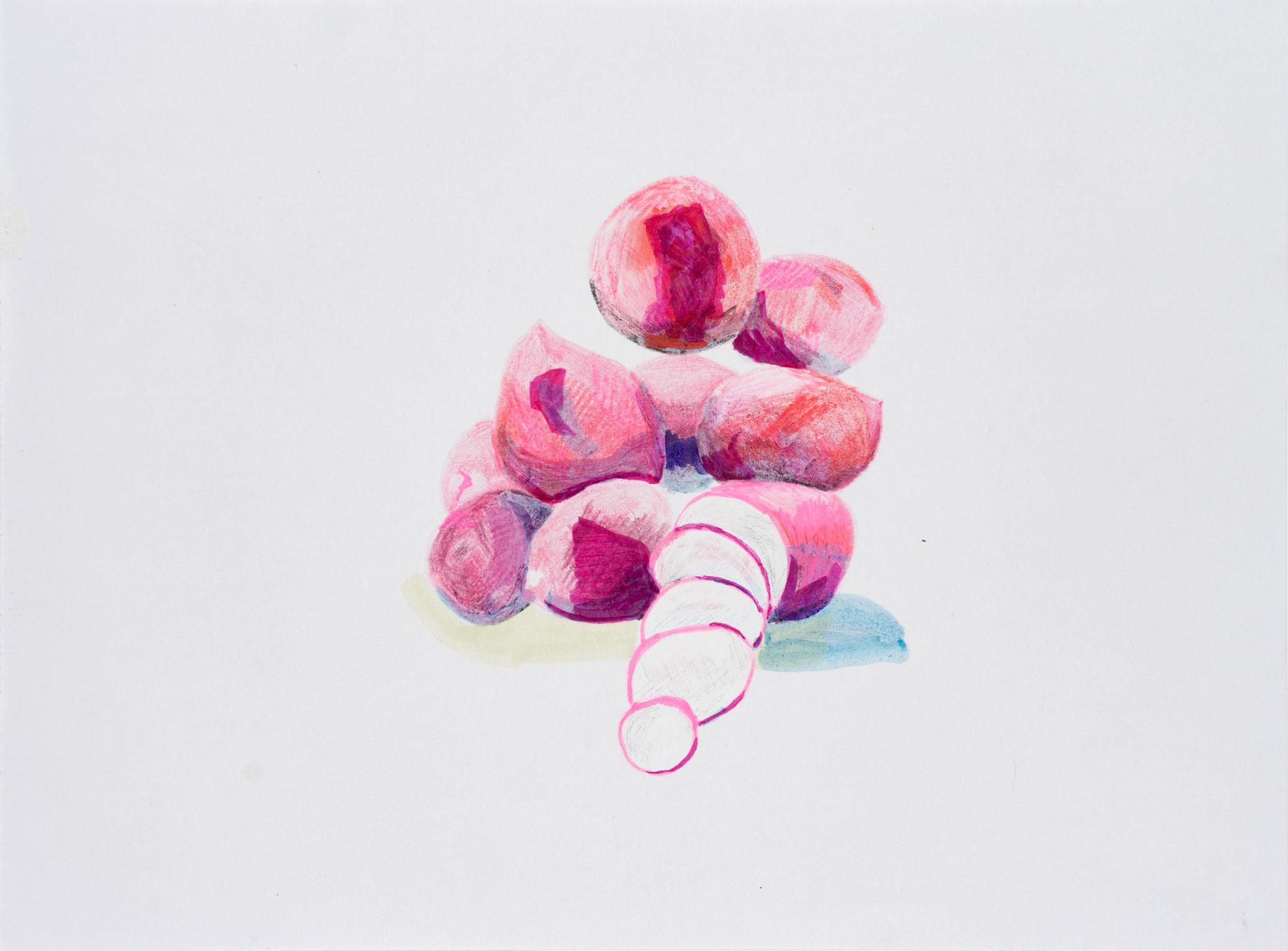 Zeichnung, Acrylmarker, Farbstift und Mischtechnik auf Papier, 28,5x21cm, Radieschen, Künstlerin: Franziska King