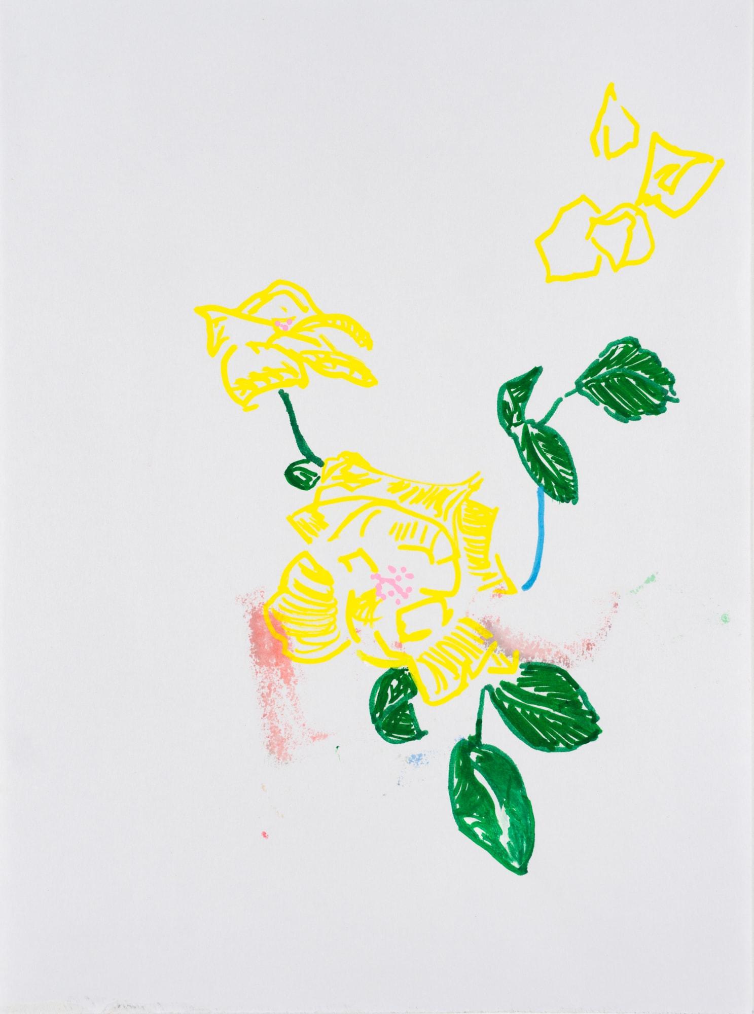Zeichnung, Acrylmarker auf Papier, 21x28,5cm, gelbe Blüten, Künstlerin: Franziska King
