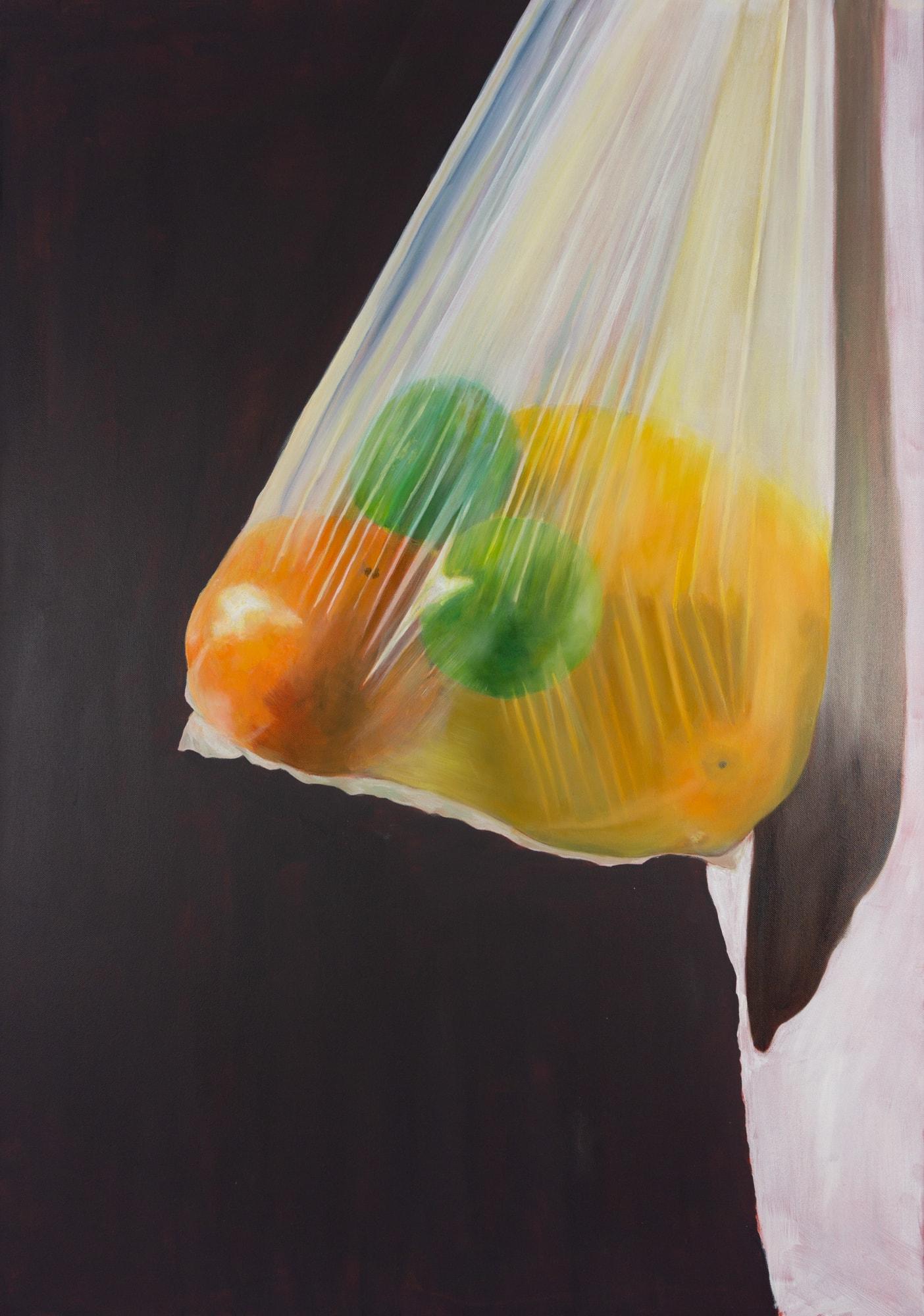 Malerei, Öl auf Leinwand, 70x100cm, Plastiksack mit Zitrusfrüchten, Künstlerin: Franziska King