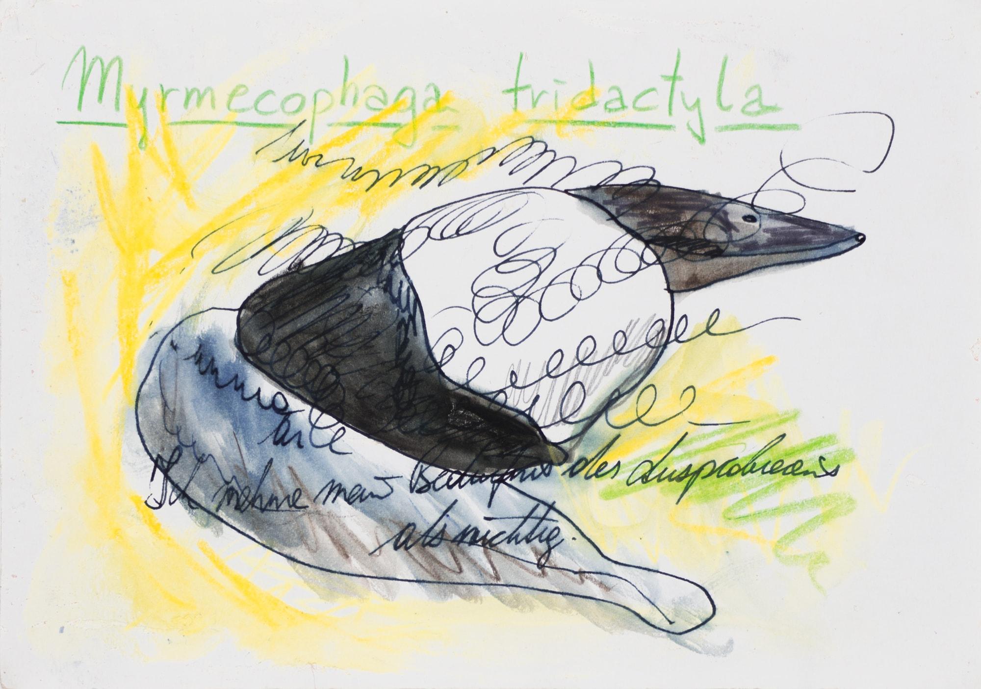 Zeichnung, Farbstift und Tusche auf Papier, 20,9x14,8cm, totes Tier mit Text, Künstlerin: Franziska King