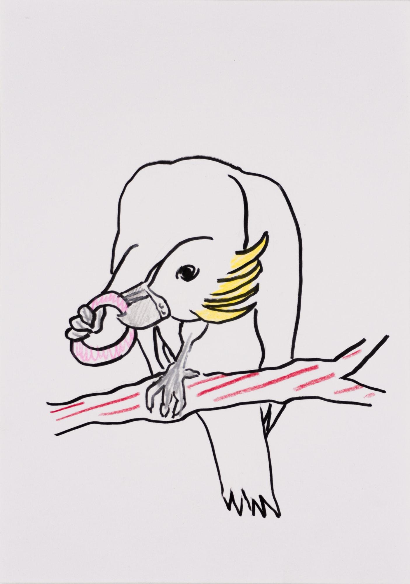 Zeichnung, Farbstift und Tusche auf Papier, 14,8x20,8cm, Kakadu mit Spielzeug, Künstlerin: Franziska King